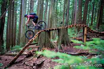 NSMBA to maintain first-ever sanctioned downhill bike trails on Hollyburn Mountain - North Shore News