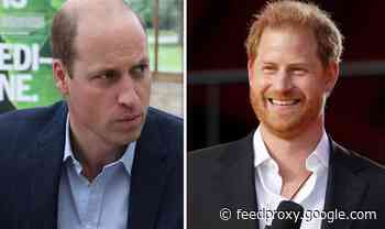 Prince Harry announces new eco project days before William's Earthshot awards