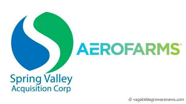 Merger terminated between AeroFarms and Spring Valley Acquisition Corp.