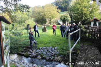 Erfolgreiche Projekte im Kreis Aschaffenburg beispielhaft vorgestellt - Main-Echo