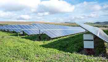 'European wind and PV PPA price jumps 8% in Q3'