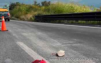 Muere hombre atropellado sobre autopista, en tramo Ciudad Mendoza- Maltrata - El Sol de Córdoba