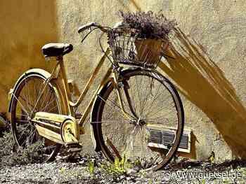 Schnäppchen mit zwei Rädern – Rietberg verkauft gefundene und nicht abgeholte Fahrräder – Gütsel Online - Gütsel