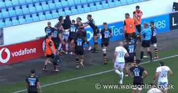 Water carrier sent off after sparking brawl in Wasps v Exeter match