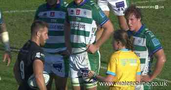 'I'm not your childminder!' Female ref branded new Nigel Owens after cutting one-liners in Ospreys game