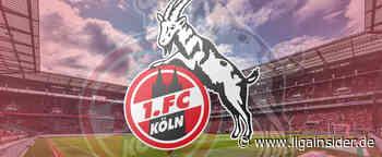 1. FC Köln: Die Aufstellung gegen TSG 1899 Hoffenheim ist da! - LigaInsider