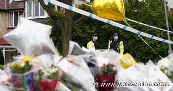 Sir David Amess MP murder suspect named as probe raids three addresses