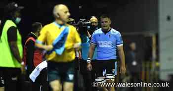 Ellis Jenkins injury fears eased as Wales flanker taken off as 'precaution' 14 days ahead of New Zealand clash
