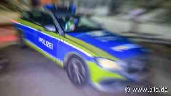 Dresden: Richter schickt Tram-Hetzer in die Psychiatrie - BILD