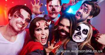 Best sexy Halloween costumes ideas and shops for women and men