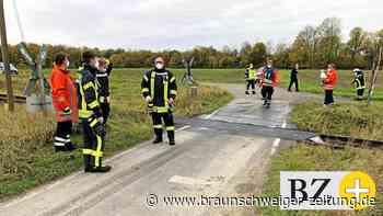 Regionalbahn tötet im Kreis Gifhorn Hund und Herrchen