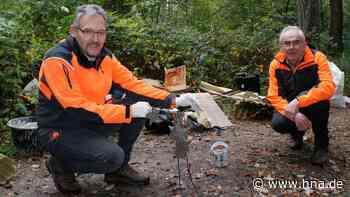 Wilder Müll bei Holzheim erzürnt Waldbesitzer - Bußgeld droht - HNA.de