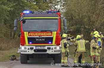 Tierischer Rettungseinsatz - Feuerwehr eilt Schwan am Großen Teich zu Hilfe - inSüdthüringen