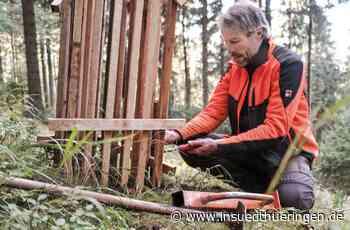 Waldaufforstung - Junge Bäumchen werden oberhalb des Steinbachtals gesetzt - inSüdthüringen