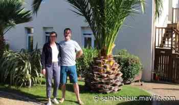 Des cocotiers californiens aux palmiers paimpolais - maville.com