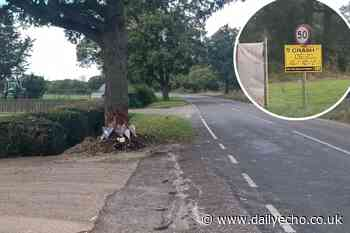 Flowers left at scene where Southampton man died in crash