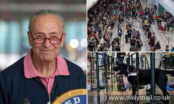 Schumer: Use DOGS to keep airport security lines moving if vaccination rule creates staff shortage