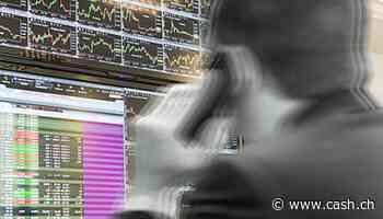 Einstiger Börsenüberflieger - Wird Temenos nun zum heissen Übernahmekandidaten?