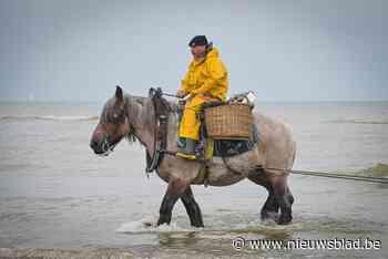 Zaterdag afscheid van paardenvisser Johan Vanmassenhove in kerk Oostduinkerke