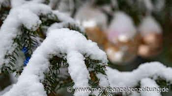 Weiße Weihnachten in Deutschland? Zwei Wetter-Experten wagen erste Prognose