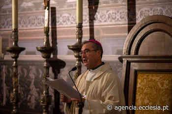 Porto: D. Manuel Linda quer exame de consciência de leigos e pastores no início do Sínodo - Agência Ecclesia