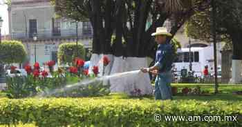 Analizan trabajo en Servicios Públicos de Irapuato - Periódico AM
