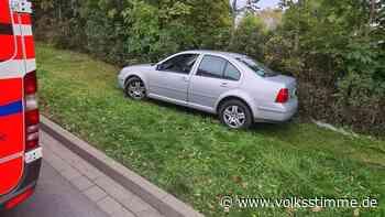 Wespen im Auto: 55-Jähriger kommt in Oschersleben von Fahrbahn ab - Volksstimme