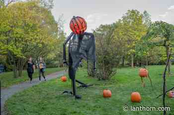 Student get spooked at the Arboretum – Grand Valley Lanthorn - Grand Valley Lanthorn