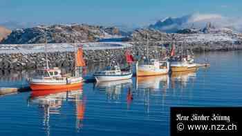 Norwegens eigenes kleines Steuerparadies: Warum plötzlich reihenweiseSuperreiche in die Arktis ziehen