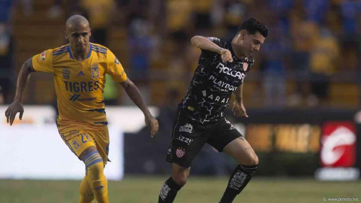 Horarios de la Jornada 13 del Torneo Grita México 2021 de la Liga MX - PorEsto