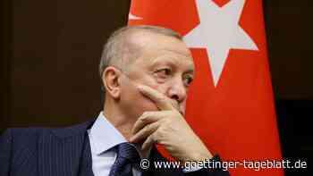Erdogans Afrika-Reise: Wie die Türkei ihren Einfluss auf dem Kontinent ausbaut