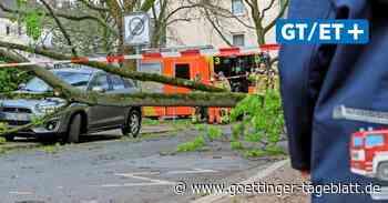Unwetterwarnung: In Niedersachsen droht ein schwerer Sturm