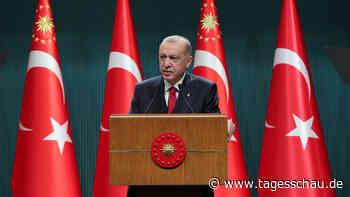 EGMR rügt Schutz-Paragrafen für türkischen Präsidenten