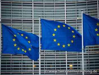 Europäische Union: EU-Kommission stößt neue Debatte zu Schuldenregeln an - Bietigheimer Zeitung