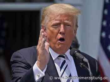 USA: Trump will Herausgabe von Dokumenten zu 6. Januar verhindern - Bietigheimer Zeitung