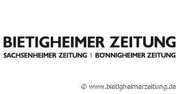 Deutschland: Axel Springer entbindet Bild-Chefredakteur Reichelt von Aufgaben - Bietigheimer Zeitung