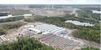 Developer predicts sparking future for gold mine project north of Sudbury