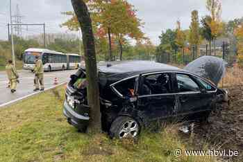 Verkeershinder na ongeval op Diepenbekerweg in Hasselt