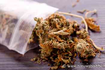 Hollander crasht met 16 kilo cannabis in koffer tegen gevel en riskeert nu 24 maanden cel