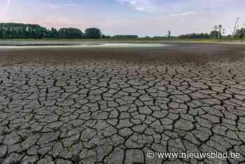 Droge zomers, miljoenen aan schade: Gent droogt uit, maar er zijn oplossingen