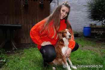 """Viggo helpt Lieze (24) door de dag, maar ze moet 19.000 euro betalen om hem overal mee naartoe te nemen: """"Wie kan dat nu?"""""""