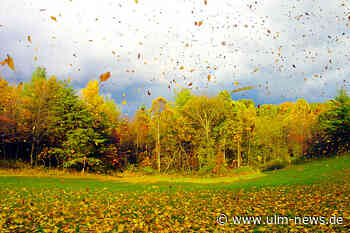 Der erste Herbststurm kommt