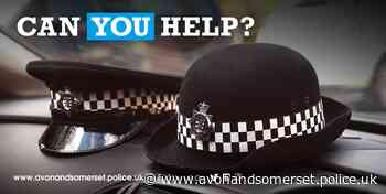 Appeal: Attempted robbery in St. George Park, Bristol