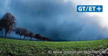 """Ruhe vor Sturm """"Ignatz"""": Feuerwehr  bereitet sich vor – Stadt sperrt Parks"""