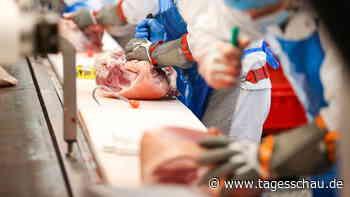 Coronavirus-Pandemie: ++ Viele Infizierte in Schlachtbetrieb ++   tagesschau.de - tagesschau.de