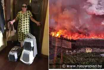 """Ingrid (69) verloor huis en volledige inboedel door lavastroom op La Palma, zoon start crowdfunding: """"Ik ben alles kwijt"""""""