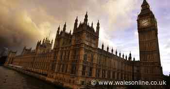 Arrest made after gallows erected outside parliament, MPs told