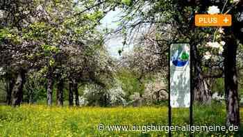 Siebenbrunner Obstbäume sind ein Gen-Reservoir für uralte Apfelsorten