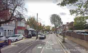 Police launch manhunt for attacker after schoolboy, 13, was stabbed