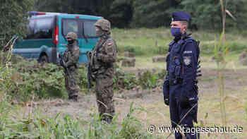 Grenzgebiet zu Belarus: Amnesty wirft Polen Pushbacks vor